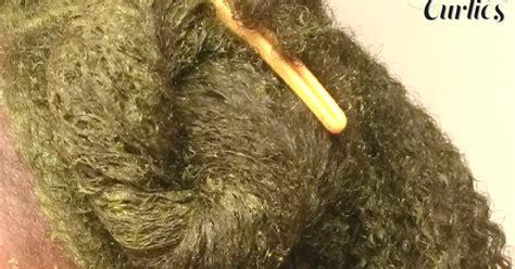 natural hair cassia auriculata  hair review