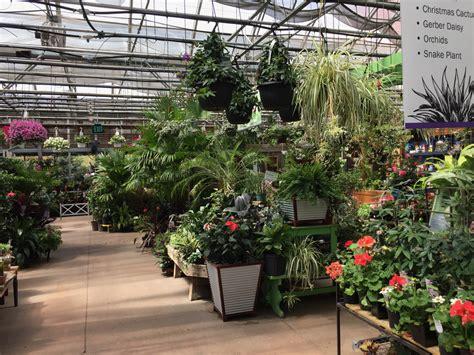 Supply Hours Williston by Garden Supply Williston Vt Garden Ftempo
