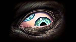 Third Eye (Ænima) - Tool | *Lyrics* HQ - YouTube