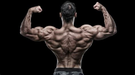 How to build bigger lats like fitness model
