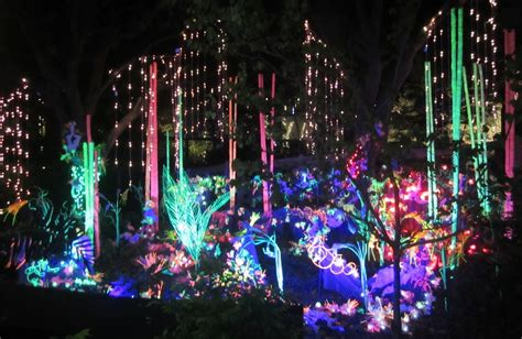 how much does zoo lights cost in phoenix zoo lights houston 2013 365 things to do in houston