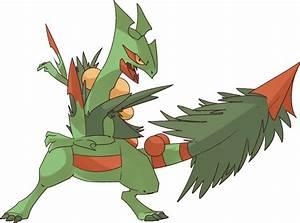 Mega Sceptile Pokemon Tcg Images | Pokemon Images