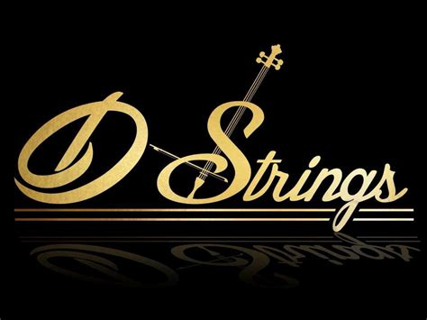 strings wedding ceremony   louth wedding bands