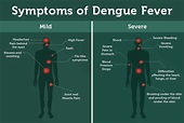 All about Dengue fever - Drugs Can Save Your Life