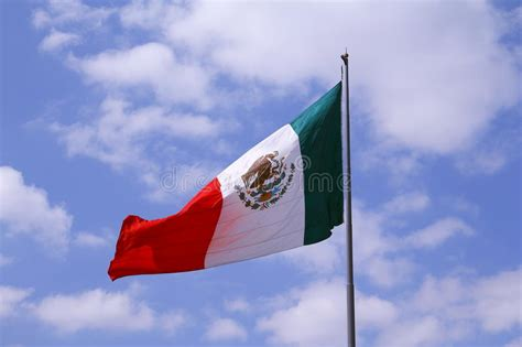 Mexican flag with jalapeno stock photo. Image of patriot ...