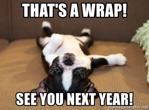 Food Coma Meme That S A Wrap See You Next Year Food Coma Puppy Meme