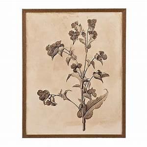 Earthy Botanicals III Framed Art Print Kirklands