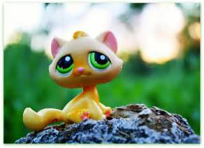 lps yellow cat lps yellow cat flickr photo