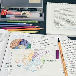 Pin Von Arleth Leyva Auf Notes Organization