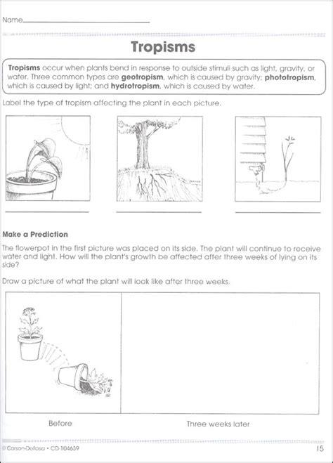 Worksheets Carson Dellosa Math Cd 1046 Worksheets Best Free Printable Worksheets