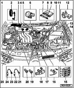 Vw Jetta Engine Diagram