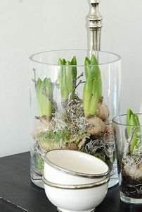 Amaryllis Im Glas : amaryllis gestecke einfacher geht 39 s nicht blo nicht gie en sondern h bsch in glas mit ~ Eleganceandgraceweddings.com Haus und Dekorationen