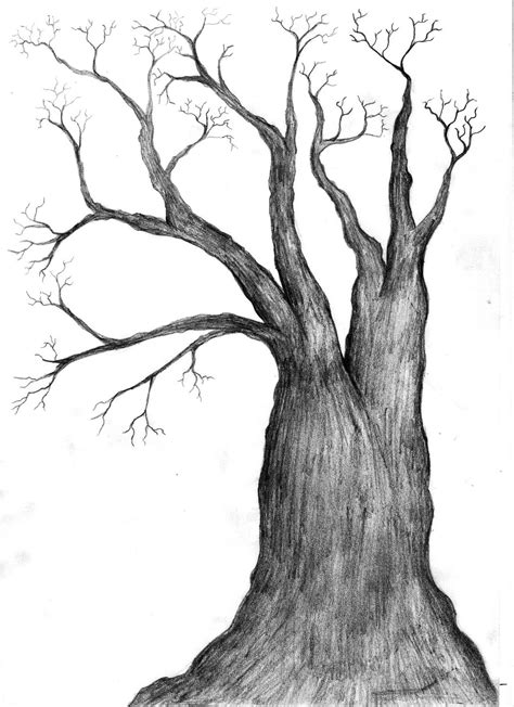black  white tree drawing   clip art