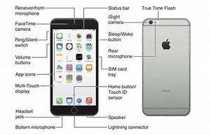 Image Result For Iphone 6 Buttons Diagram