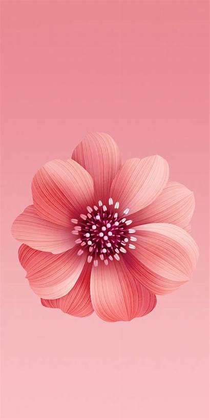Mi Wallpapers Xiaomi 6x Pantalla Fondo A2