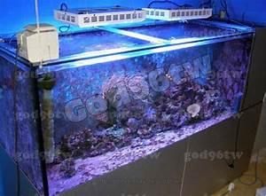 Aquarium Led Beleuchtung : led dimmbar aquarium tank beleuchtung meerwasser korallenriff licht 1x 120watt ebay ~ Frokenaadalensverden.com Haus und Dekorationen