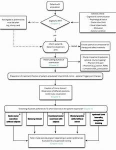 Clinical Flowchart For Mirror Therapy In Patients With