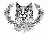 Coloring Cat Cats Adult Wreath Pages Laurel Adults Wise Him Looks Around Duathlongijon Justcolor sketch template