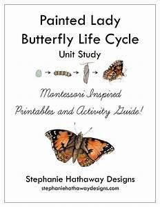 Painted Lady Butterfly Unit Study Bundle
