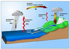 The Water Cycle Of The Earth  Water Participates In A