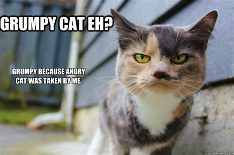 Annoyed Cat Meme - grumpy cat eh grumpy because angry cat was taken by me angry cat quickmeme
