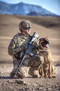 Military Working Dog - Daily Dog TagDaily Dog Tag
