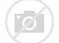 BIG WEDNESDAY (1978) GARY BUSEY, JAN-MICHAEL VINCENT BWDY ...