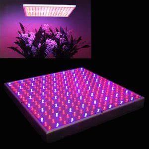 Led Grow Erfahrung : led grow lampe kaufen test erfahrung gew chshaus profi ~ Watch28wear.com Haus und Dekorationen