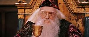 Star Ace 1:6 - Richard Harris Dumbledore - Harry Potter