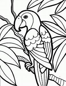 Malvorlagen Fur Kinder Ausmalbilder Papagei Kostenlos