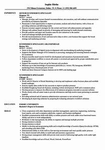 entry level resume ecommerce resume formats project manager resume job