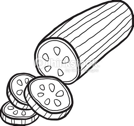 cucumber slice clipart black and white cucumber vector thinkstock