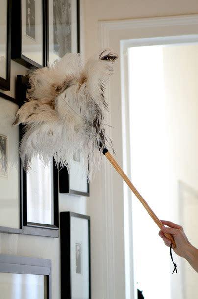 ostrich feather duster eliminate dust  laundress