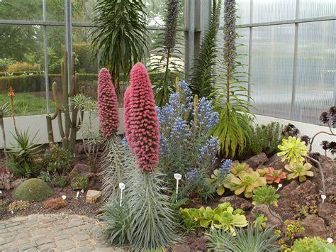 Gewächshaus Botanischer Garten Pankow by Botanischer Garten Krefeld