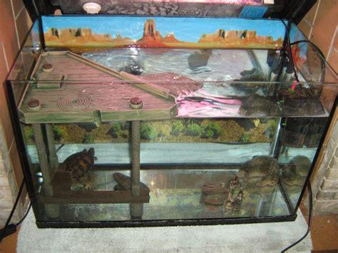 aquarium pour tortue terrestre mon aquarium pour mes tortues