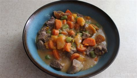 recipe beef stew homemade dog food top dog tips