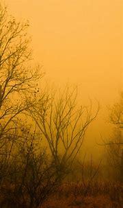 Mist Smartphone Wallpapers HD ⋆ GetPhotos