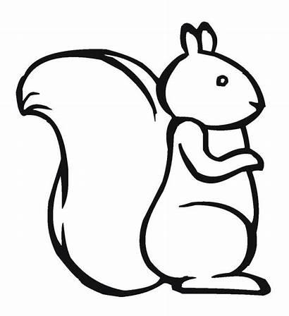 Squirrel Sincap Outline Coloring Printable Boyama Drawing