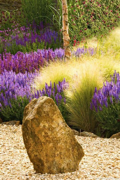 plante plein soleil en pot les 25 meilleures id 233 es concernant jardin en plein soleil sur plantes de soleil