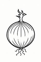 Onion Coloring Para Colorear Cebolla Ui Kleurplaat Zwiebel Dibujo Malvorlage Coloriage Pages Loek Malarbild Printable Dibujos Schulbilder Schoolplaten Educima Abbildung sketch template