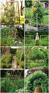 20 Cheap And Easy DIY Trellis Vertical Garden Structures