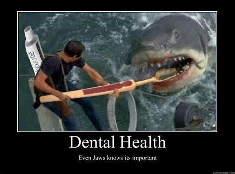 Funny Dentist Memes - dental health even jaws knows it s important meme funny dentist www uniteddentalgroup