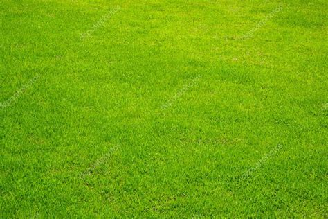 Green Grass Background perspective texture — Stock Photo ...