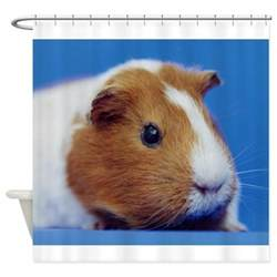 Guinea Pig Shower by Guinea Pig Shower Curtain By Acornpetgifts