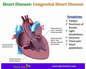 Heart Diseases Types, Symptoms, Risk Factors, Prevention ...