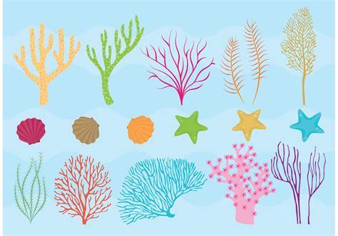 coral reef  fish vectors   vector art