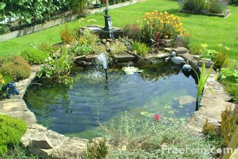 water ponds pictures garden water feature pictures free use image 12 03 1 by freefoto com