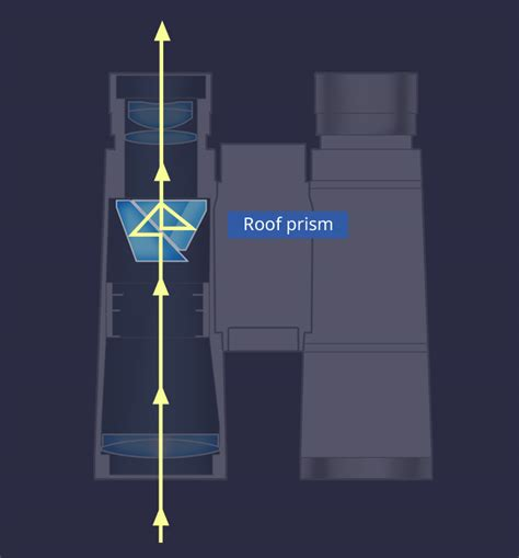 nikon sport optics types  binoculars