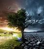 Life or Death? on Behance