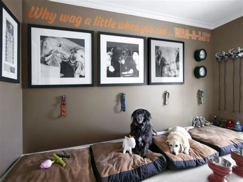 Home Design Ideas For Dogs by Mudroom For Dogs Hgtv
